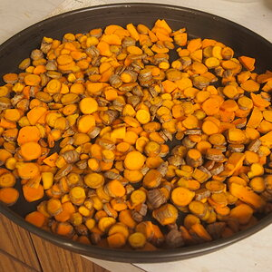 P4040001 turmeric harvest drying.JPG